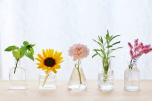 花の写真(加工前)
