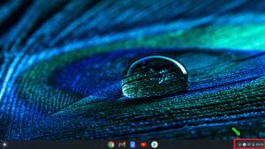 【Chrome book】Chrome OSのアップデート方法